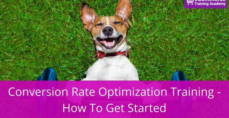 Conversion Rate Optimization Training – How To Get Started