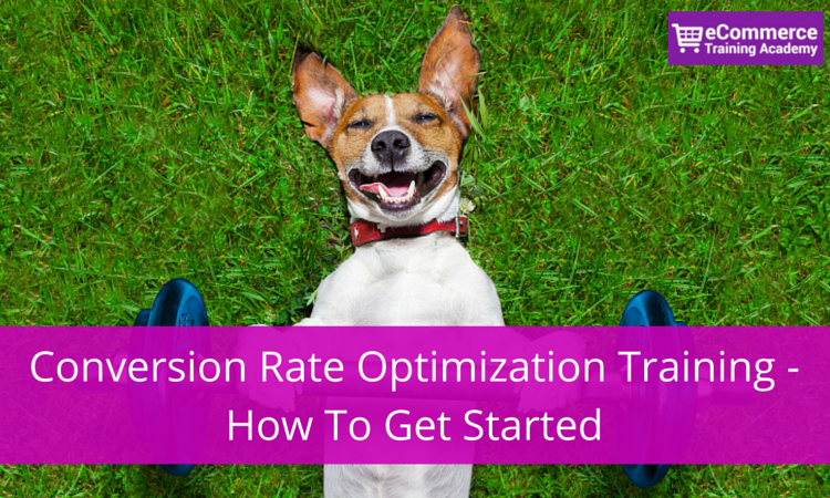Conversion Rate Optimization Training (1)