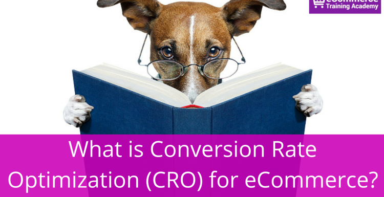 What is Conversion Rate Optimization (CRO) for eCommerce?