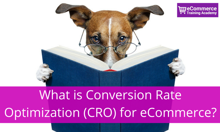 What is Conversion Rate Optimization for eCommerce