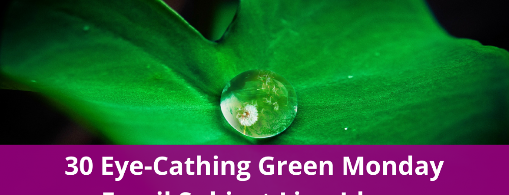 30 Eye-Cathing Green Monday Email Subject Line Ideas