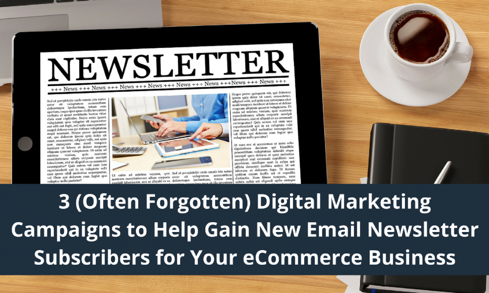 digital marketing campaigns to get email newsletter subscribers